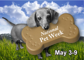 Pet Promotions for Pet Week