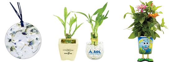 Promotions That Grow - Plants and Potpourri
